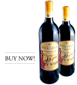 buy-castill-wine-now