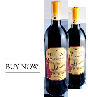 buy-castill-wine-now