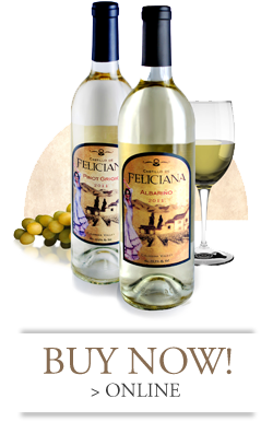 white-wines-buy-now-castillo-winery